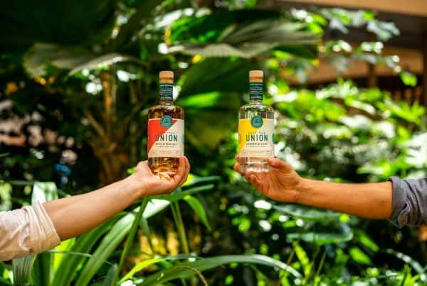 Bottles of Spirited Union rum with plants